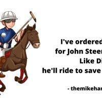 Democratic Alliance leader race with John Steenhuisen as Dick King